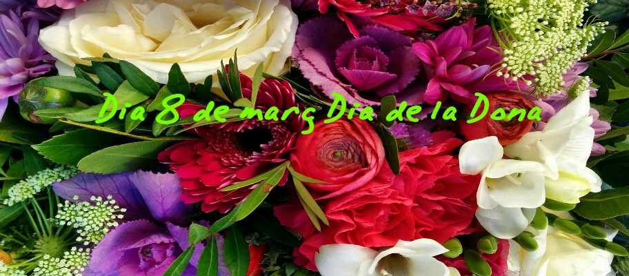 Dia Internacional de la Mujer 08.03.2017